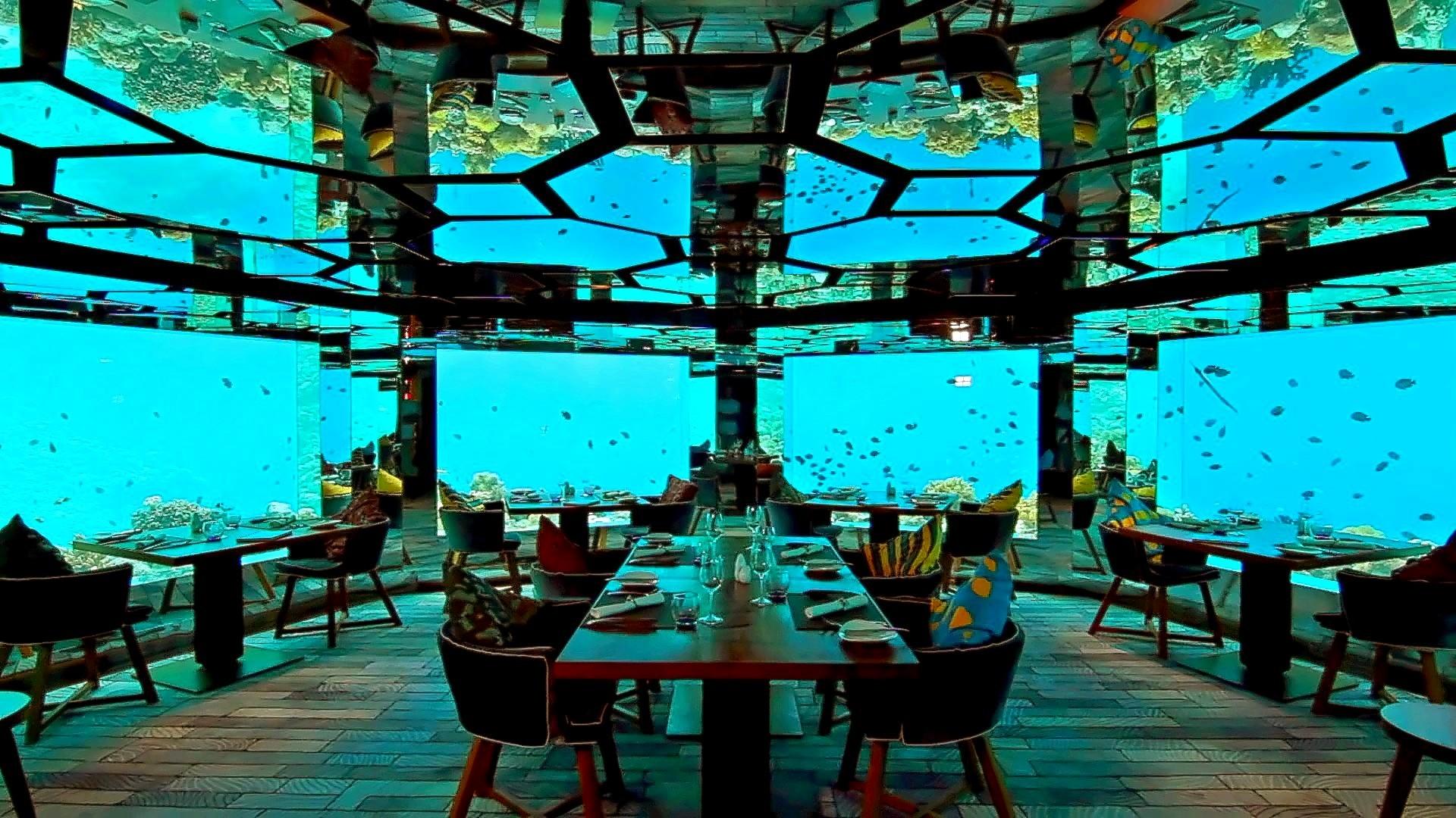 674775.kihavah-island-hotel-anantara-kihavah-villas.underwater-restaurant.01